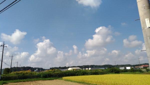 茨城田園風景