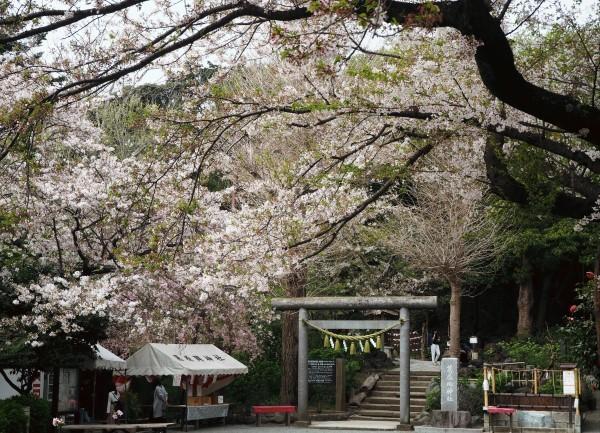 葛原岡神社 鎌倉