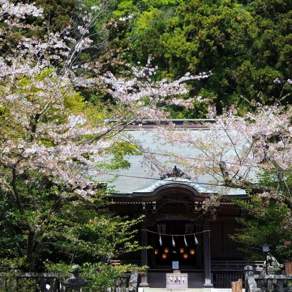 御霊神社 鎌倉
